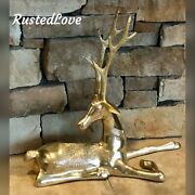 Solid Brass Vintage Buck Deer Laying Down Christmas Holiday Decoration 17.5