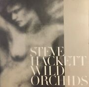 Steve Hackett - Wild Orchids - Cd - Special Edition - Mint Condition - Rare