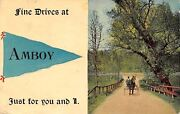 Amboy Illinoisfine Drive In Horse And Buggypennant Postcard 1913