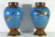 Japanese Meiji Period Cloisonne Pr 10.25 Blue Red Vases W/ Ducks One As Is
