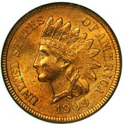 Old Fatty Green Label Slab Ngc Ms65 Rd 1909 Indian Head Cent Red 1c Bc01