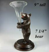 Antique 7.25 Tall Swiss Black Forest Bear With Glass Epergne Vase Insert