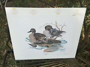 Rare Vtg Bill Wesling Pencil Signed Print Authenticated Green-winged Teal Ducks