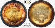 1995 Silver Eagle Monster Toned Toned Pcgs Trueview Ms65