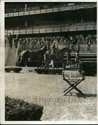 1966 Press Photo Jim Fitzsimmons And Horses At The Paddock - Nes33677