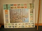 Rare -vintage Duck Stamp Collection 1934-1974 And Wisconsin 1929 1930 Licenses