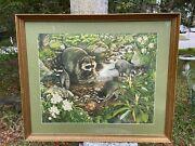 Vintage Don Whitlatch Framed Art Print Raccoons Mother Babies In River Painting
