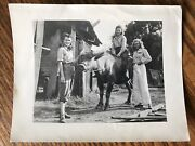 Vintage Photo Pretty Women Modeling Down On The Farm Bull Cow 1930andrsquos Pinup Girls