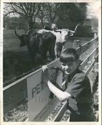 1969 Press Photo Phillip Reed Posts Cattle Sign Next To Memorial Drive School