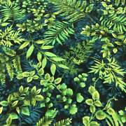 Dragonfly Garden Forest Fern 2468-66 Quilting Fabric By Henry Glass Bty