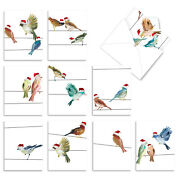 10 Merry Christmas Cards Boxed - Holiday High Wire Birds M3318xsg
