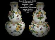Antique Pair Of Meissen Porcelain Vases With Encrusted Flowers And Insects Design