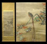Hanging Scroll Ogata Korin Autumn Leaves Tail Long Bird Paper Book With Box