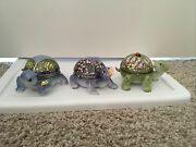 2008 Ardleigh Elliott Turtle The Wonders Of Nature Music Box Collection Set 3