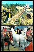 Doctor Dolittle - 1967 Movie Theater Lobby Card Set Of 2 Glossies - Rex Harrison