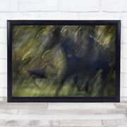 Autumn Frequency Abstract Wildlife Wild Action Horse Speed Wall Art Print