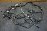 Right Engine Cylinder Bank Wiring Harness Usa 220366 244076 Ferrari 612 Note