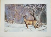 Old Orchard Buck By Ned Smith Limited Edition Art Prints Signed