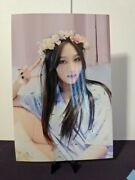 Dreamcatcher Siyeon 500 Day Event Photo Picture Photocard Polaroid