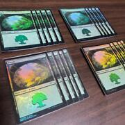 Mtg Mark Poole Streaming Star Land 20-piece Set Of Forest
