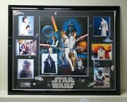 Huge Signed Star Wars Grouping Of Photos Mounted Wall Plaque