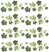 Evergreen Ivy Wall Decals Vines Border Wall Decor Stickers For Kitchen Living Of