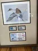 Ducks Unlimited Print And Stamps Mexico. 1993