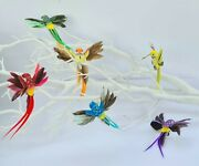 6 Artificial Fake Rainbow Feather Craft Clip Humming Birds Home Party Decoration