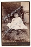 Cabinet Card Cute Young Girl Sitting On Grass W/flowers Schemm Family Phila.pa