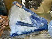 Kyanite Mineral Display Stand Home Decor Pirate Gold Coins Crystal Rock