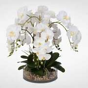 White Real Touch Phalaenopsis Orchid And Vanilla Grass In A