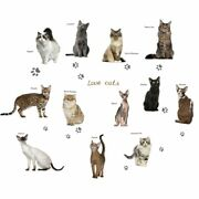 3d Lovely Cat Type Wall Sticker Cabinet Bedroom Home Decor Decal Poster