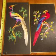 Exotic Bird Tropical Folk Art Real Feathers Madr In Mexico Rare Old Vintage Lot