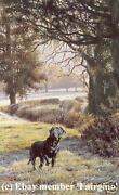 Steven Townsend Woodland Call Black Labrador Labs Dogs