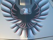 1979 Pontiac Trans Am 10th Anniversary Silver Decals Ultimate Kit 79
