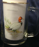 Ned Smith Greater Scaup Canvasback Duck Glass Mug Cup Gold Trim 16 Z Birds