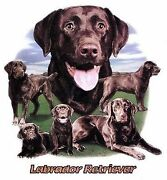 Chocolate Labrador Retriever Lawn T Shirt Pick Your Size 7 X Large To 14x Large