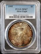 1995 American Silver Eagle Certified Ms 67 By Pcgs Incredible Toning Wow