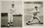 1993 Mickey Mantle 2/ 8x10 Photos-one Of Mantle Swinging, Other Posing Exc