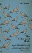 The Widowhood Book - A Complete Guide To The Best Methods Of Racing Pigeons On T