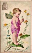 0051 Liebig Complete Set Litho Cards C1873 Oracle Girl No Gold And No Jar Rare