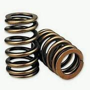 Comp Cams 26918-16 Perf Street 1.310 Od Beehive Spring 1.800 Installed Height