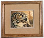 Denis Mayer Jr, The Great Visionary Great Horned Owl -signed And Numbered- L/e
