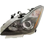 Hid Headlight Lamp Left Hand Side Hid/xenon Driver Lh In2502148 260601nl0b