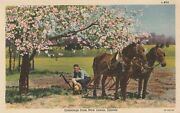 Postcard Greetings From New Lenox Illinois Farmer Plow Team Linen Posted 1942