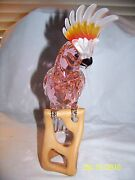 Crystal Pariadise Cockatoo Bird Red Figurine New In Box 718565 Retired