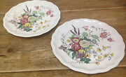 Gainsborough Spode Great Britain S245 Floral 2 Large Dinner Plates White 10 5/8