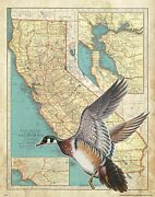 Wood Duck Hunting Vintage California State Map Art Print Calls Cabin Wall Decor