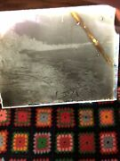Antique Glass Dry Plate Negative Photos Lot Imperial Wildlife Animals Nature