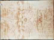 Figured Birdseye Maple Burl Wood 11718 Luthiers 5a Electric Guitar Top Plates